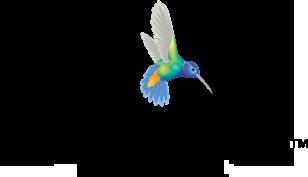 Personify Financial logo bird on left