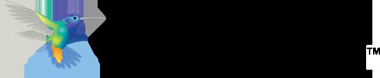 Personify Financial logo bird on top